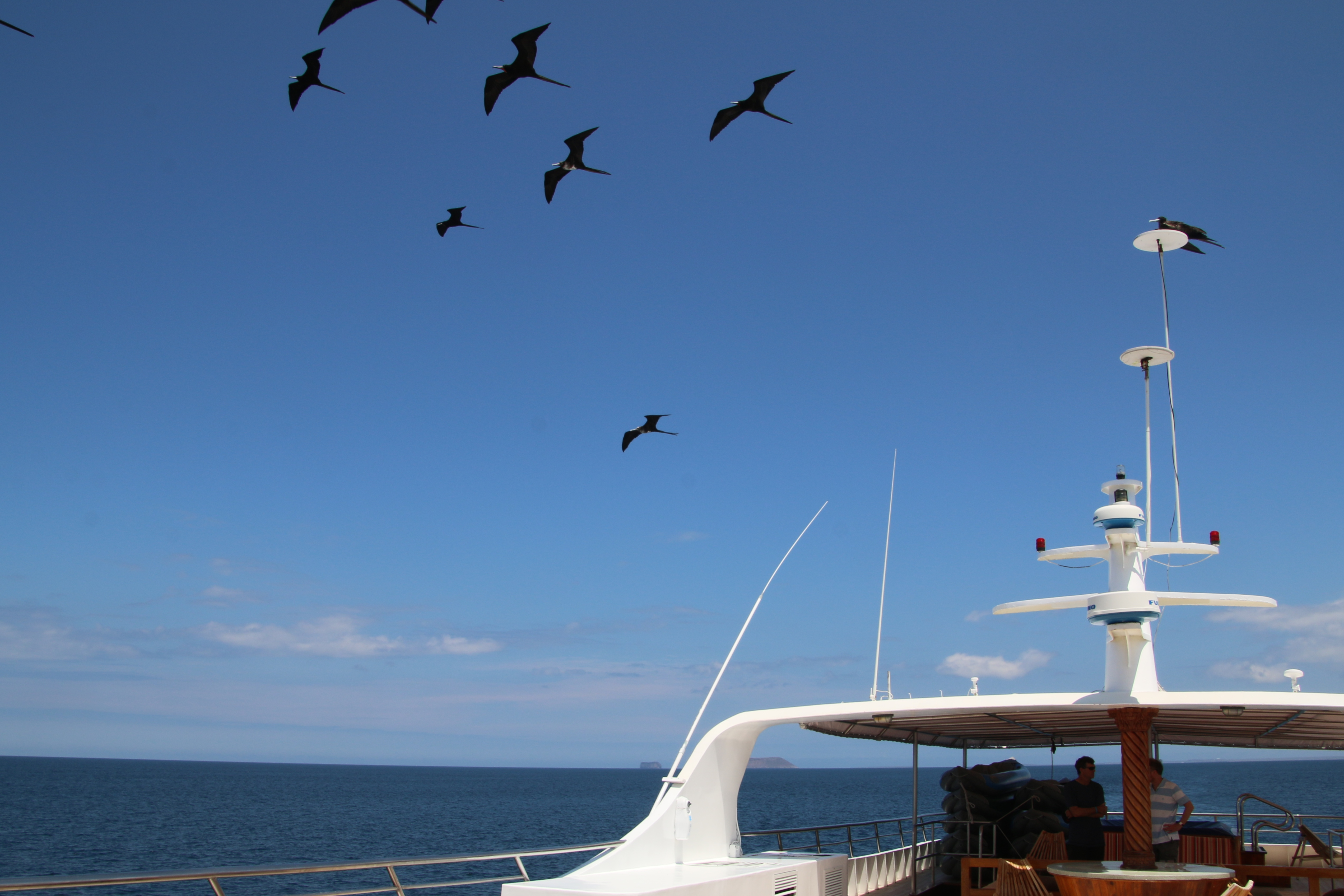 GUAYAQUIL TO GUAYAQUIL - The Galapagos Islands